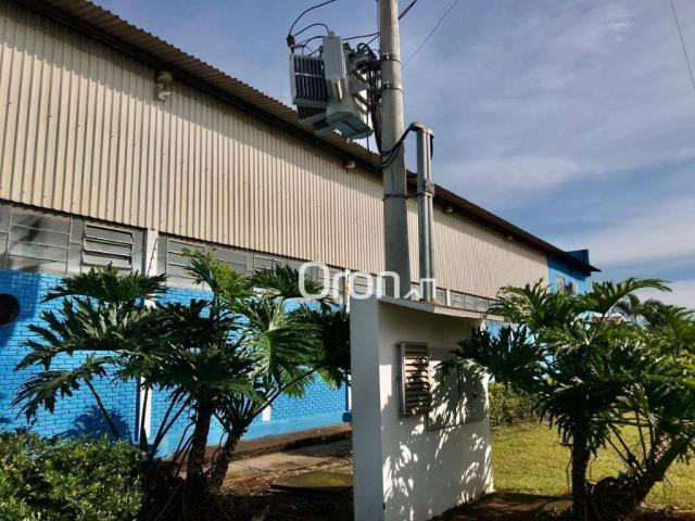 Galpão à venda, 1400 m² por R$ 2.000.000,00 - Jardim Helvécia - Aparecida de Goiânia/GO - Foto 8
