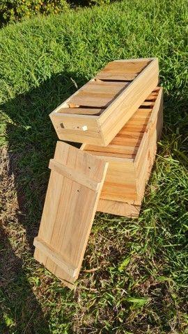 Caixa de criação de abelha. Apicultura. - Foto 3