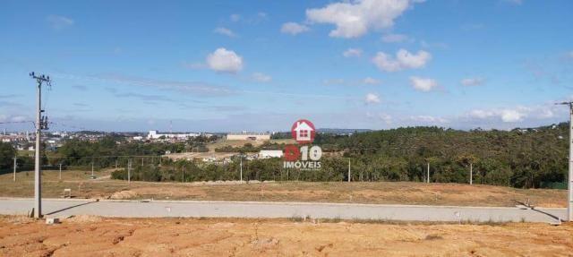 Terreno à venda, 800 m² por R$ 331.398 - Argentina - Criciúma/SC - Foto 18