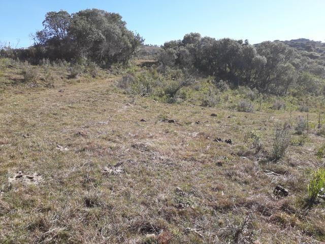 Terreno em Urupema - Foto 2