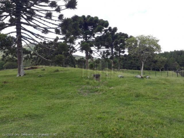 Sítio à venda, 4 m² por r$ 2.156.000 - serra grande - gramado/rs - Foto 10