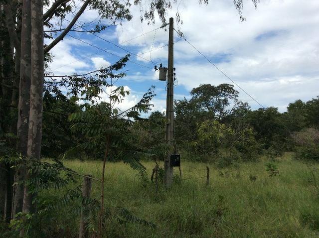Fazenda 50 alqueirões - Serranopolis GO - Foto 5