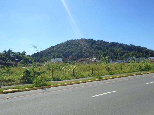 Terreno para alugar em America, Joinville cod:08039.001 - Foto 5