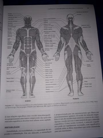 Bases Biomecânicas do Movimento Humano - Foto 3