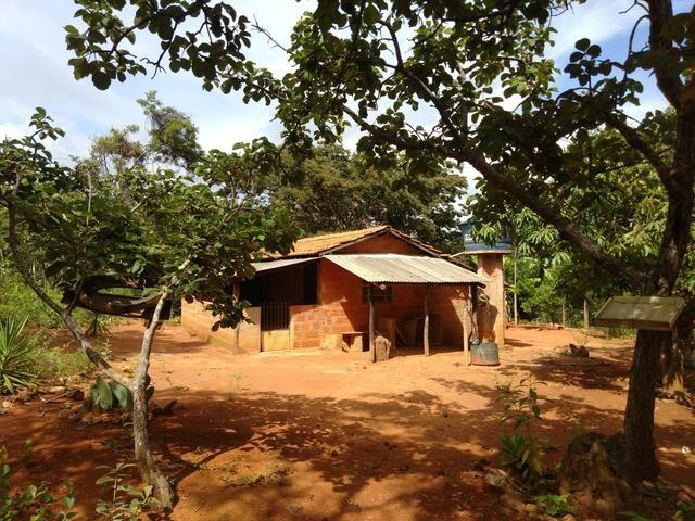 Vendo Chácara na Comunidade Rural de Extrema em Bocaiuva-Mg - Foto 3