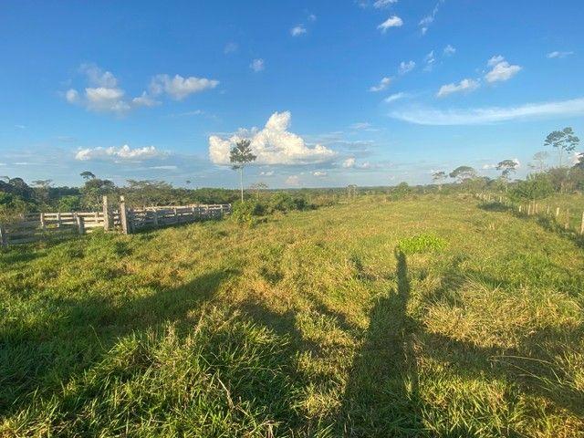 Vendo terra na AC 10 Km 27 estrada de Porto Acre  - Foto 5