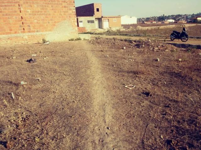 Vendo 2 terrenos loteamento Benjamim - Foto 3
