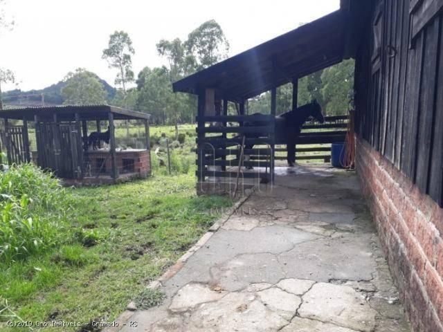 Sítio à venda, 4 m² por r$ 2.156.000 - serra grande - gramado/rs - Foto 11