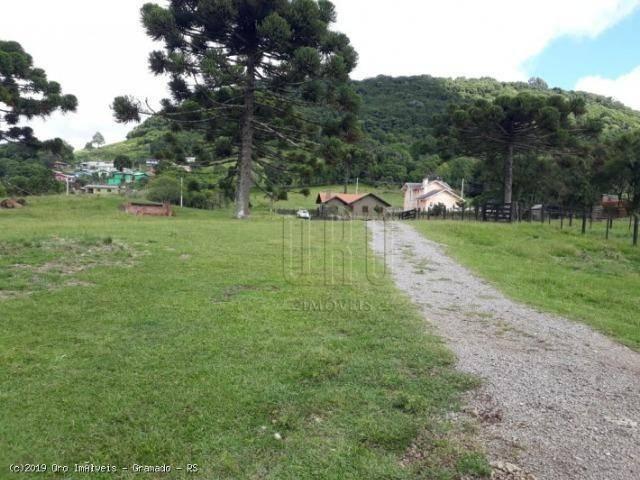 Sítio à venda, 4 m² por r$ 2.156.000 - serra grande - gramado/rs - Foto 12
