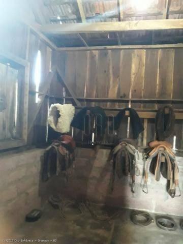 Sítio à venda, 4 m² por r$ 2.156.000 - serra grande - gramado/rs - Foto 15