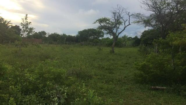 Vendo terreno em Pium, lagoa azul 20x50