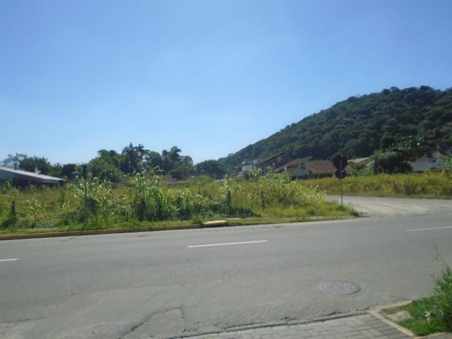 Terreno para alugar em America, Joinville cod:08039.001 - Foto 7
