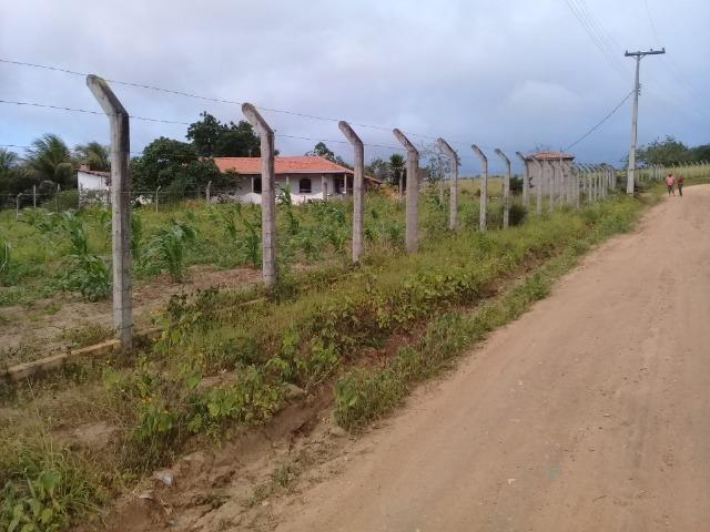 Excelente sítio, com casa sede e casa de caseiro na região de Santo Estevão Bahia - Foto 14