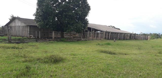 Fazenda bem estruturada - Foto 14