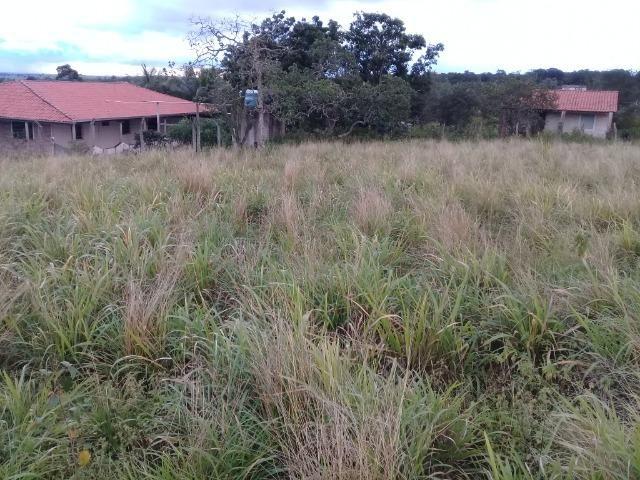 Excelente sítio, com casa sede e casa de caseiro na região de Santo Estevão Bahia - Foto 20