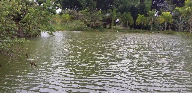 Chácara com lagos e pomar