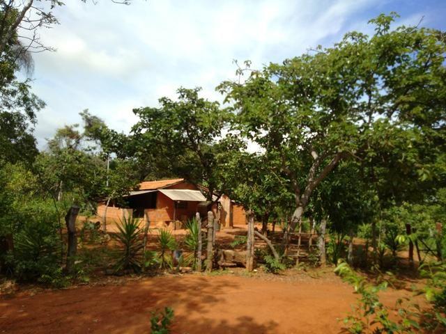 Vendo Chácara na Comunidade Rural de Extrema em Bocaiuva-Mg - Foto 2