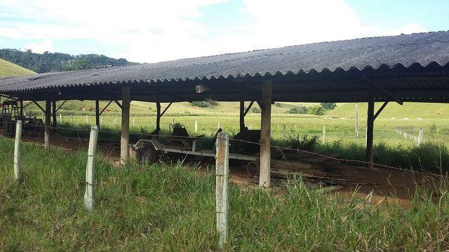 Fazenda córrego alto Duas Barras RJ  - Foto 13