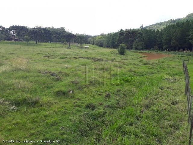 Sítio à venda, 4 m² por r$ 2.156.000 - serra grande - gramado/rs - Foto 14