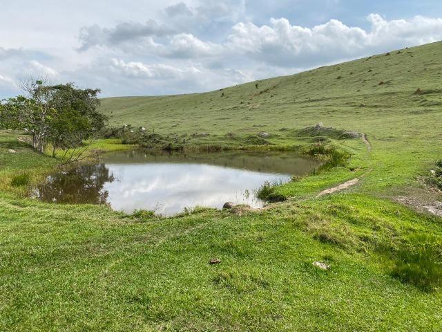 Lotes de terrenos com 5 mil metros - ideal para sua chacara,preço indiscutivel!!! - Foto 6