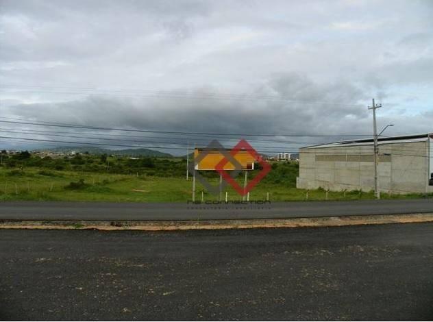 Terreno à venda, 4.200 m² - nova caruaru - caruaru/pe - Foto 2