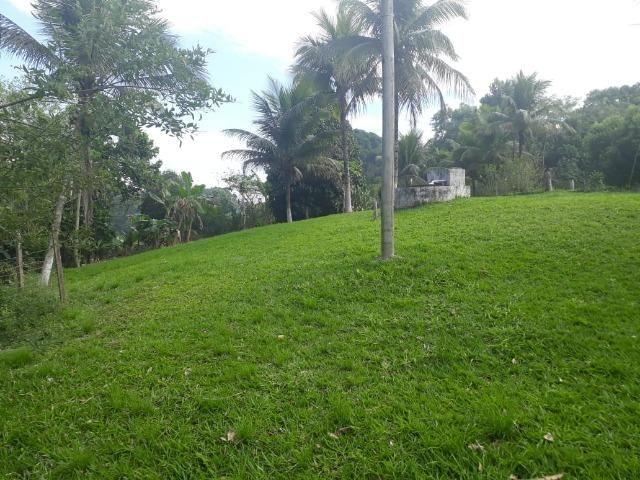 Caetano Imóveis - Sítio de 4.600m² com localização privilegiada (c/ acesso asfaltado!) - Foto 3