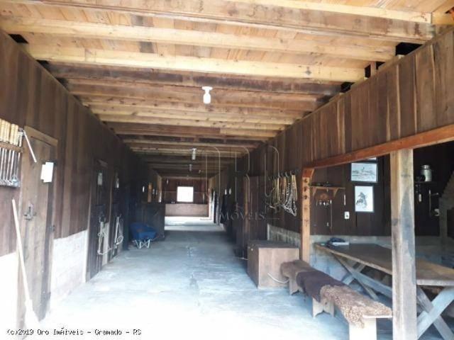 Sítio à venda, 4 m² por r$ 2.156.000 - serra grande - gramado/rs - Foto 5