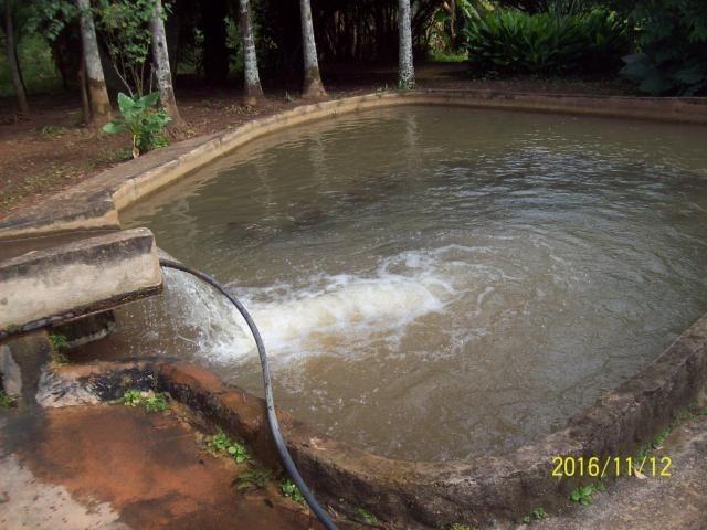 Chácara em Anicuns, 2 Alqueires e 37 Litros de Pura Beleza e Encantamento, Rica em Água - Foto 6