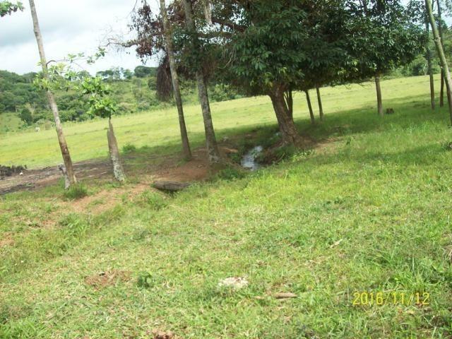 Chácara em Anicuns, 2 Alqueires e 37 Litros de Pura Beleza e Encantamento, Rica em Água - Foto 14