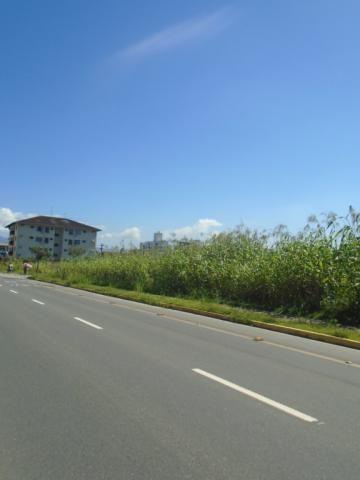 Terreno para alugar em America, Joinville cod:08039.001 - Foto 4