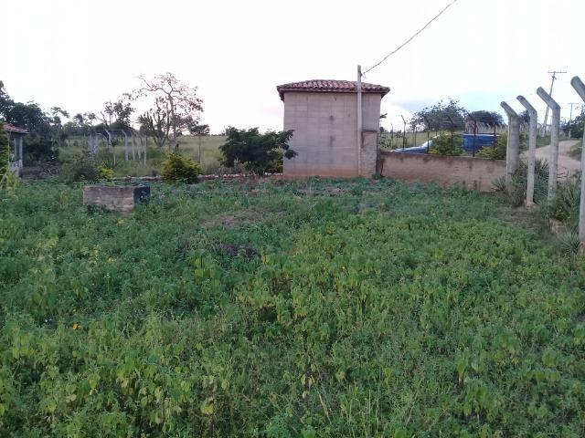 Excelente sítio, com casa sede e casa de caseiro na região de Santo Estevão Bahia - Foto 19