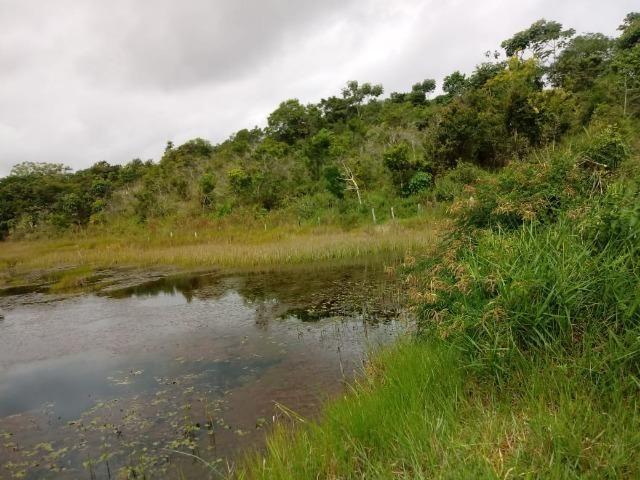 Vende-se uma propriedade rural em Maraú - Foto 4