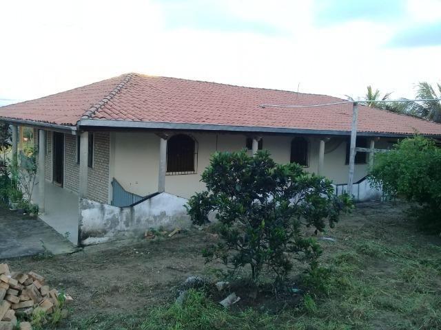 Excelente sítio, com casa sede e casa de caseiro na região de Santo Estevão Bahia - Foto 8