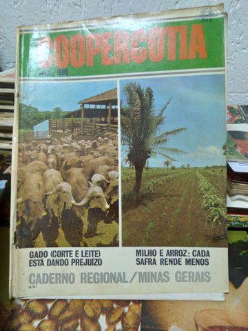 Revista coopercotia 1972 raríssimas - Foto 5