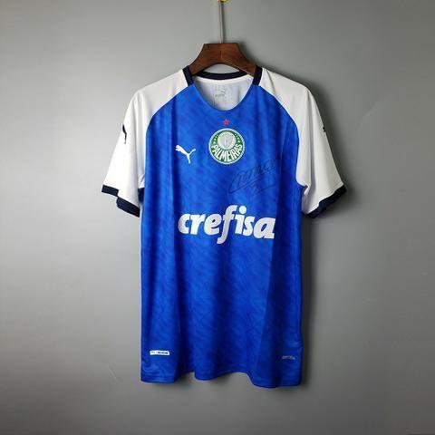 Palmeiras - Foto 4