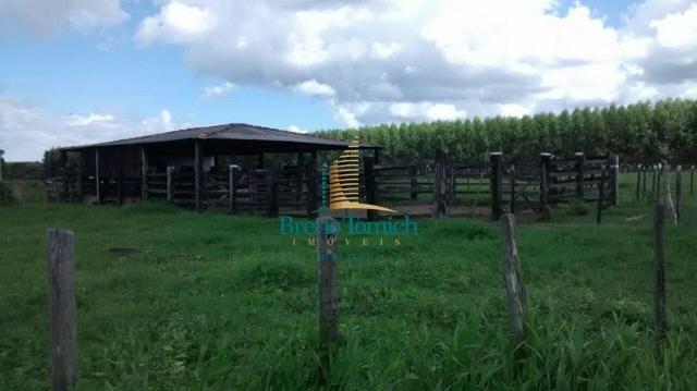 Fazenda à venda, 890000 m² por r$ 1.300.000 - teixeira do progresso - mascote/ba - Foto 10