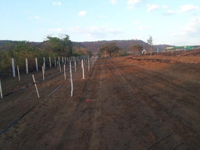 Terreno na Empreendimento na estaca zero/Lagoinha - Foto 5