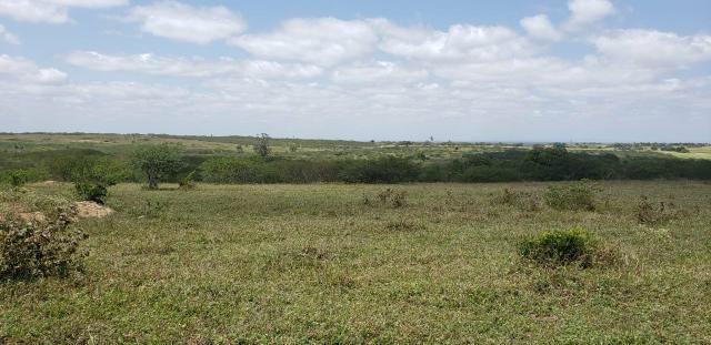 Fazenda com 80 hectares entre brejinho e santo Antônio do salto da onça - Foto 3