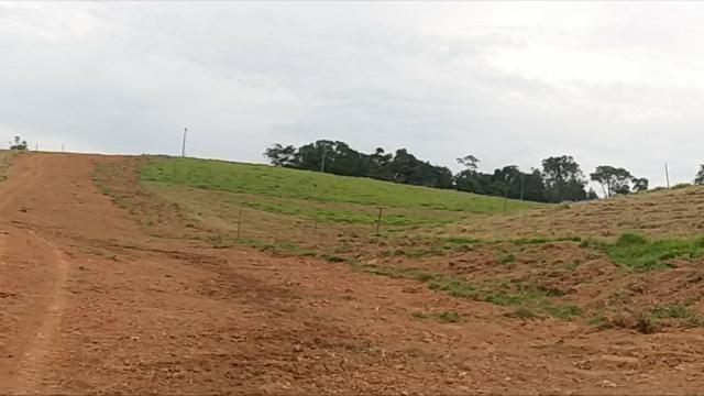 Terrenos Rurais, Ótima Topografia - Foto 5