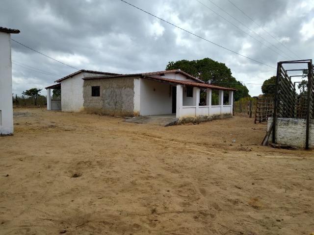 Granja com 4 há em bom jesus com 3 casas e outra em construção, piscina, galpão - Foto 2
