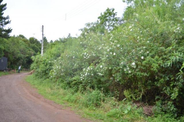Terreno à venda, 888 m² por r$ 170.000,00 - vale dos pinheiros - gramado/rs - Foto 3