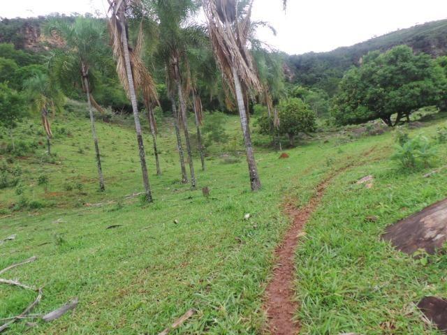Fazenda 15 Alqueires Municipio Cocalzinho Aceita Imovel até 200 mil - Foto 16