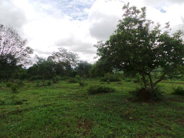 Fazenda 15 Alqueires Municipio Cocalzinho Aceita Imovel até 200 mil - Foto 9