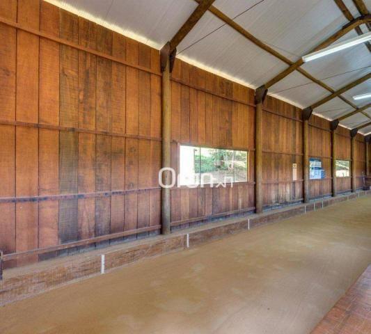 Sobrado à venda, 400 m² por R$ 2.500.000,00 - Residencial Aldeia do Vale - Goiânia/GO - Foto 12
