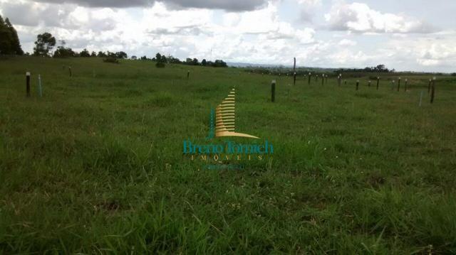Fazenda à venda, 890000 m² por r$ 1.300.000 - teixeira do progresso - mascote/ba - Foto 12