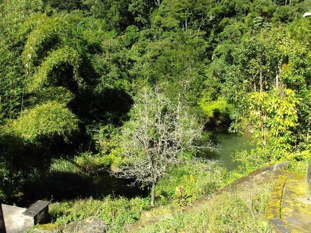 Guapimirim Sítio com 12 Alqueires e com 03 lagos e 03 Nascentes - Foto 7