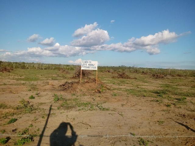 Terreno para chácara - Foto 3