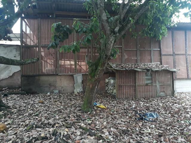 Excelente área com galpão em Guapimirim - Citrolândia oportunidade!!! - Foto 12