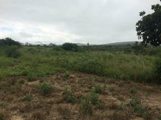 Oportunidade!! Terreno no Entroncamento de Jaguaquara - Foto 6