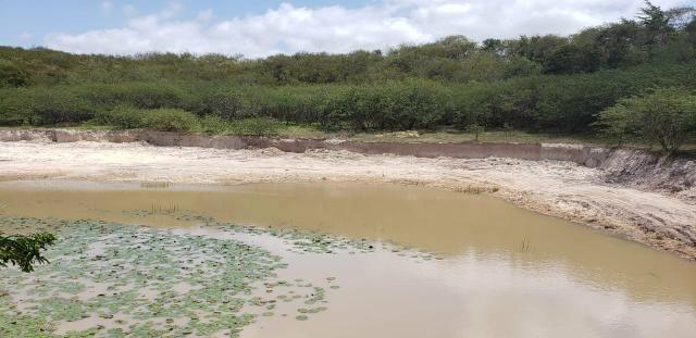 Fazenda com 80 hectares entre brejinho e santo Antônio do salto da onça - Foto 4